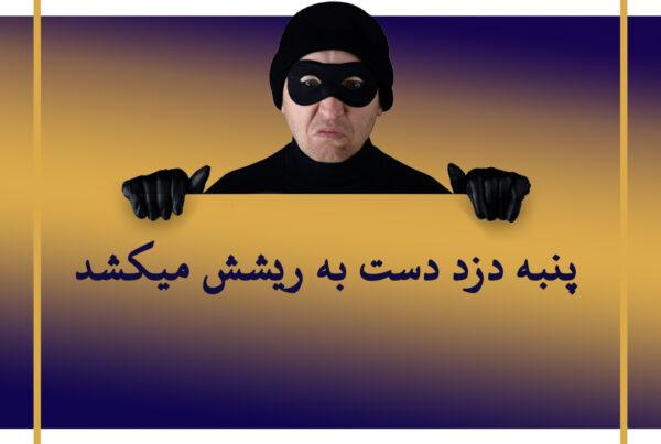 ضرب المثل های حقوقی پنبه دزد